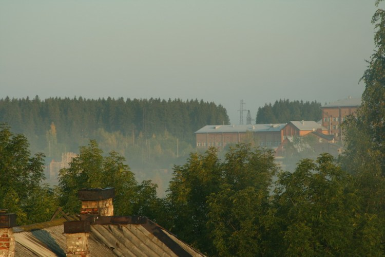 Над землей стелются остатки тумана, изгоняемые первыми лучами еще теплого солнца