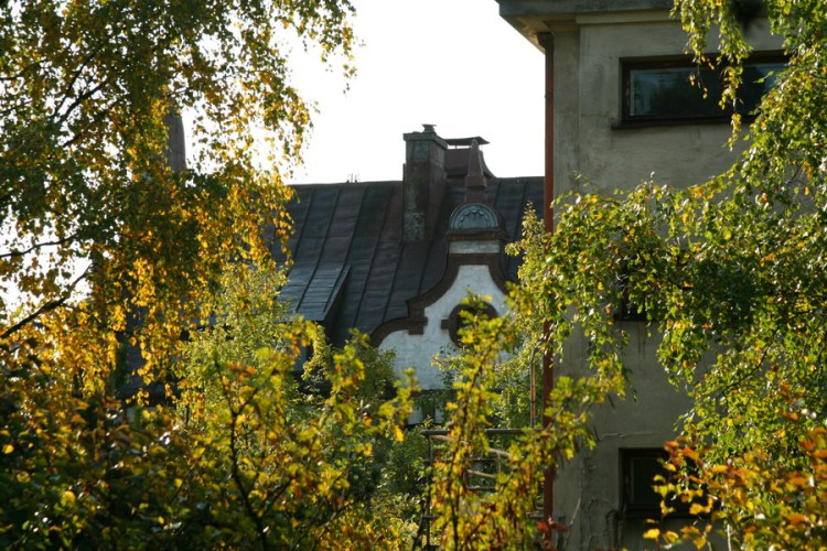 Фигурные крыши