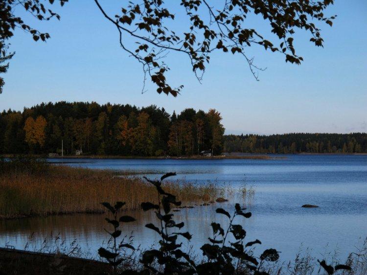Берег озера с разноцветными деревьями