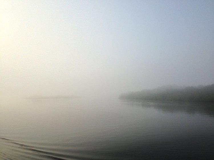 Тишина