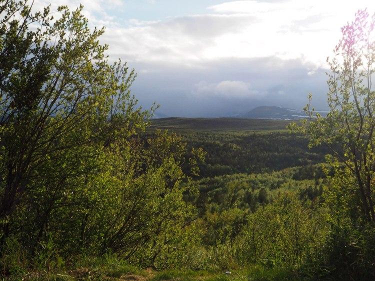До свидания, Норвегия